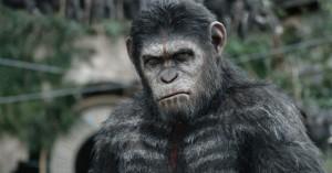 la-planete-des-singes-l-affrontement-photo-53456d6d73e2b